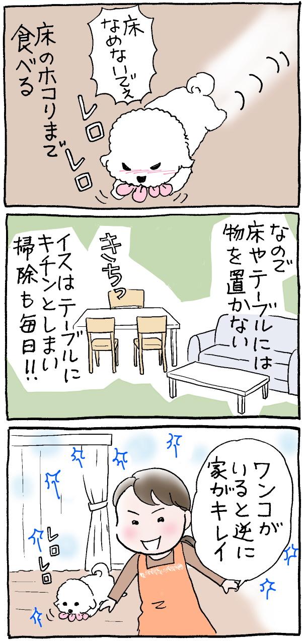 ハナちゃん大掃除2