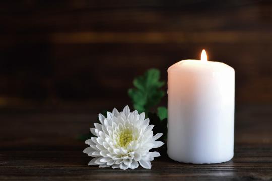 白菊と蝋燭のイメージ