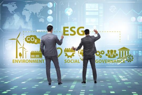 ファンドマネージャーがESG銘柄を選定